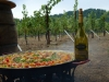 Vino & Paella at Amista Winery