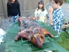 pig-roast-005