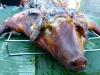 pig-roast-006